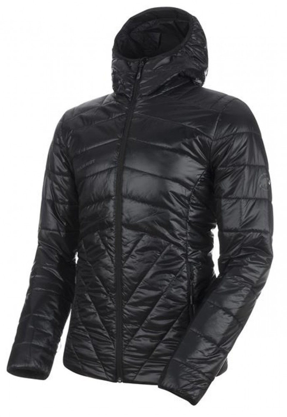 MAMMUT Rime IN Hooded Jacket - Herren